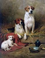 John Emms - Foxhounds and a Terrier