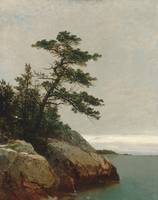 John Frederick Kensett_The Old Pine Darien Connect
