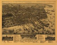 Aerial View of Pensacola, Florida (1885)