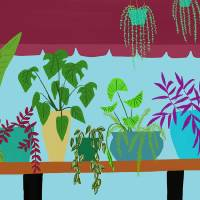 Window Plants Art Prints & Posters by michael pfleghaar