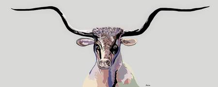 Longhorn in Denim Colors