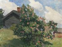 Ada Thilen, Apple tree