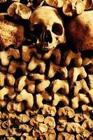 Skeletons in the Catacombs of Paris