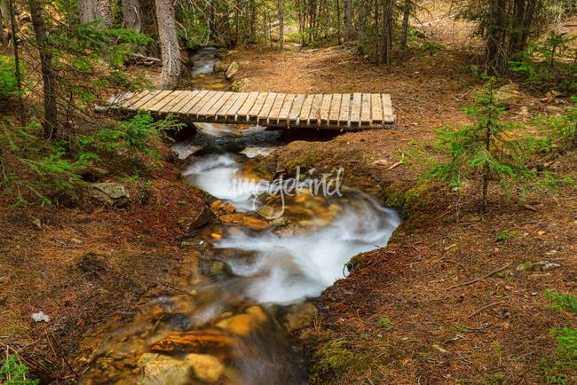 Small Stream Nature Walking Bridge