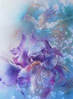 Iris in her Garden by Sara Fraser