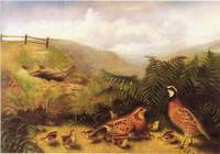 Landscape with quail cock hen and chickens by Rube