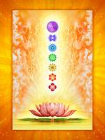 Sacred Lotus - The Seven Chakras .I