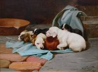 WILLIAM HENRY HAMILTON TROOD (1860-1899) Pups Slum