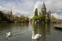 Metz with Swan and Goose