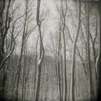 Winter Art Prints & Posters by Jeremy Hogan
