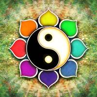 Yin Yang - Flower Rainbow Colors