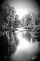 Reflections on the River Black and White