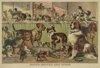 Vintage Illustration of Various Dog Breeds (1893)
