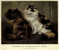 Vintage Painting of Fluffy Cats (1902)