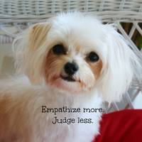 Empathize More Judge Less by Carol Groenen