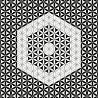 Flower of Life Black White 10