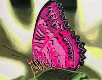 Glow Wings pink butterfly