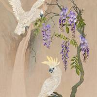 Cockatoos And Wisteria by I.M. Spadecaller