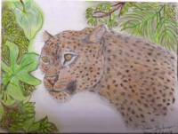 Dionis_Drawing_Leopard_Jungle
