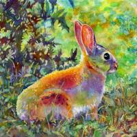 Backyard Bunny Art Prints & Posters by Hailey E. Herrera Watermedia