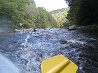 Rafting The Youghiogheny