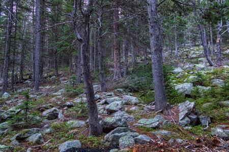 Rocky Nature Landscape