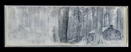 Camp A, Log Cabin in Woods (from Sketchbook X), Wi