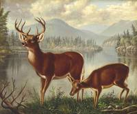 Deer and Doe , Levi Wells Prentice (1851-1935)