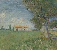 Farmhouse in a Wheatfield Arles, May 1888 Vincent