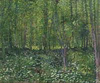 Trees and Undergrowth Paris, July 1887 Vincent van