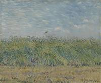 Wheatfield with Partridge Paris, June - July 1887
