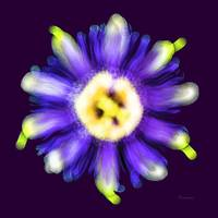 Abstract Passion Flower in Violet Blue and Green 0