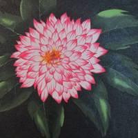 """dahlia"" by MelanieLutes"