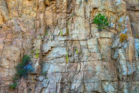 St Vrain Canyon Wall