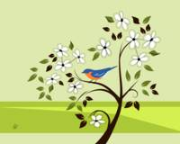Bluebird In Tree