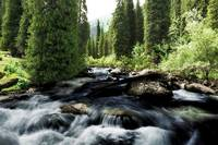Wild river in Tian Shan