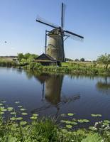 Kinderdijk Windmill Reflection