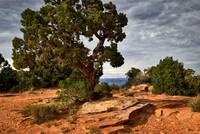 Colorado National Monument wall art
