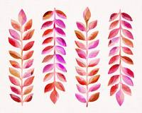 Leafy Goodness / Pink