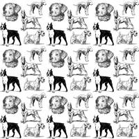 dog pattern white