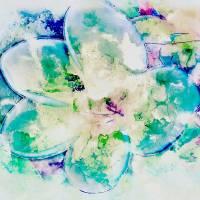 Blue Plumeria Art Prints & Posters by Skip Nall