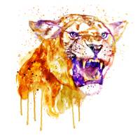 Angry Lioness Watercolor Portrait