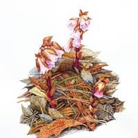 Sweet Pinesap (Monotropsis odorata) Art Prints & Posters by Elena Maza
