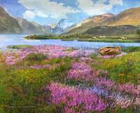 heather and loch in scotland