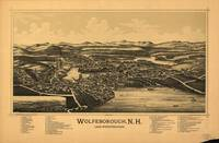 Aerial View of Wolfeborough, New Hampshire (1889)