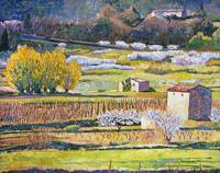 PROVENCE SPRING