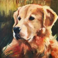 Golden Retriever Art Prints & Posters by Norma Wilson
