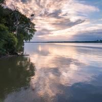 """""""Potomac Peace"""" by DanBourque"""