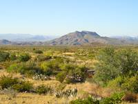 Trans-Pecos Mountains, Texas