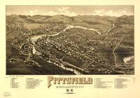 Aerial View of Pittsfield, New Hampshire (1884)
